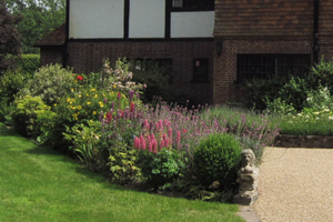 A large herbaceous border maintained by Drew Neat in Kent
