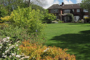 Large sloping lawn with shrub border